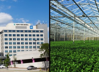 Hospital and Greeenhouse